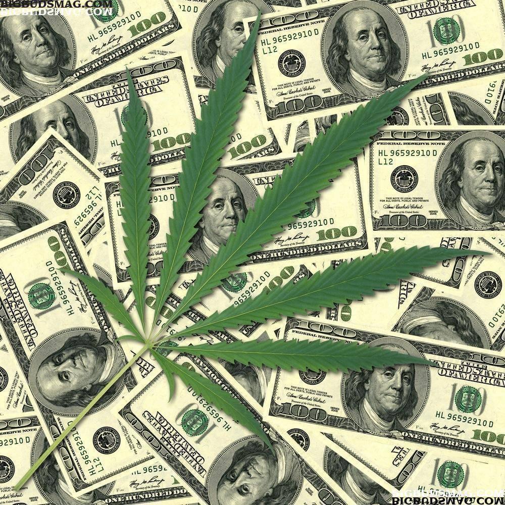 A Blunt Look at the Marijuana Industry – Berkeley ...