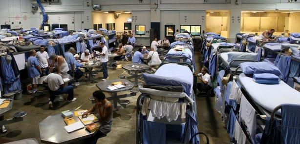 rehabilitation of inmates essay Rehabilation of prison inmates essays: over 180,000 rehabilation of prison inmates essays, rehabilation of prison inmates term papers, rehabilation of prison inmates.