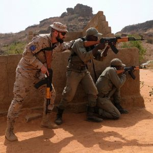 A European member of the EU Training Mission instructs a Malian soldier