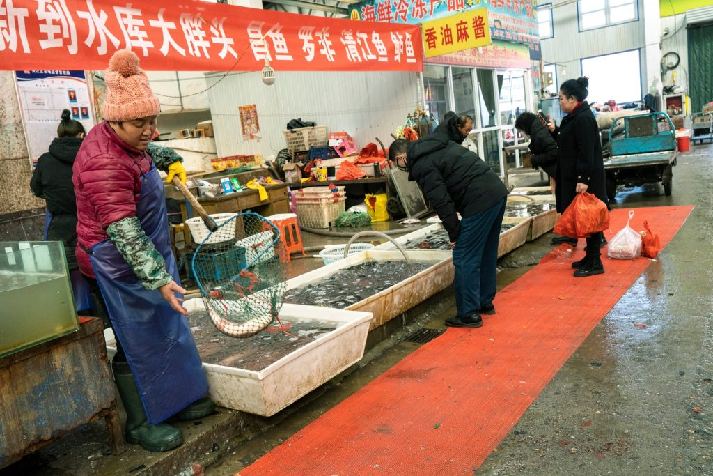 Wet market in Langfang